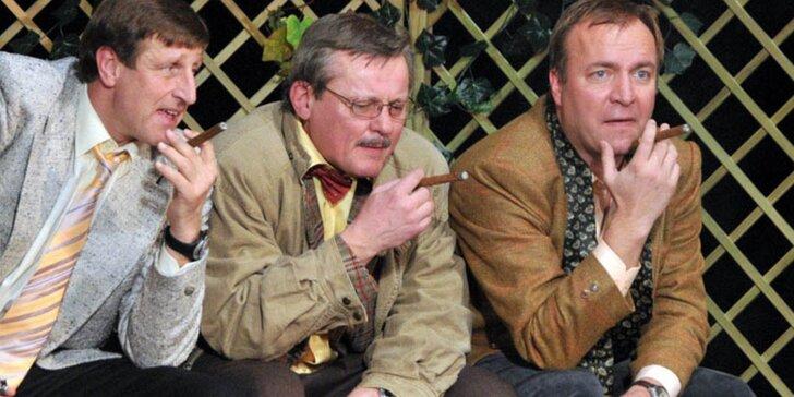 Vstupenka na divadelní představení: Příbuzné si nevybíráme