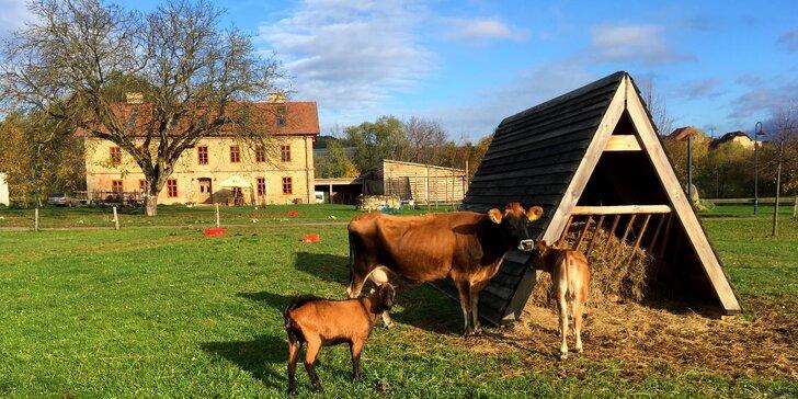 Klidný pobyt u CHKO Chřiby: polopenze, péče o zvířata a Kroměříž na dosah