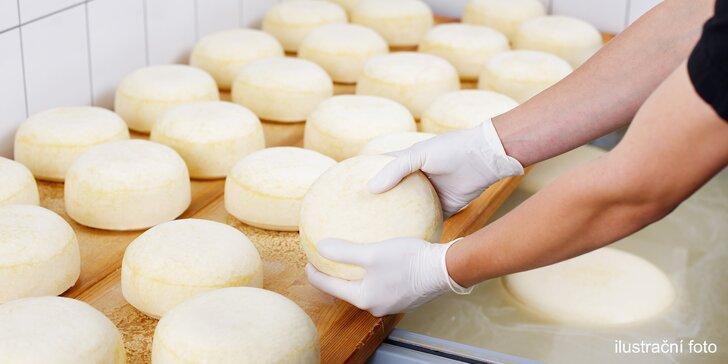 Víkendový kurz domácí výroby sýrů, másla a mléčných výrobků i možnost přespání