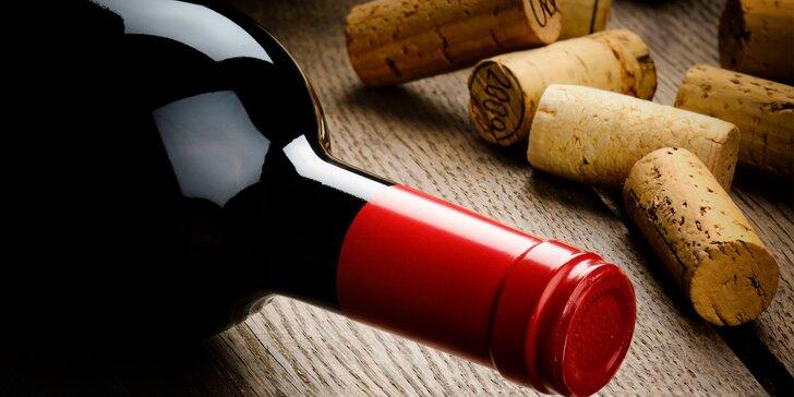 Ochutnejte klenoty jižní Moravy: 4 litry bílého nebo červeného vína