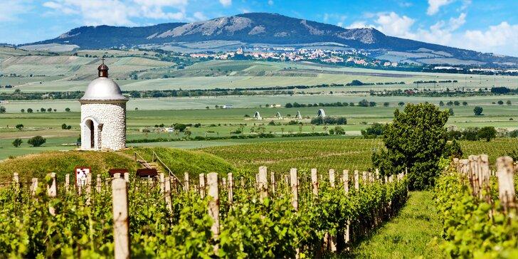 Kouzla Pálavy: pobyt mezi vinicemi s chutným jídlem, bowlingem i lahví vína