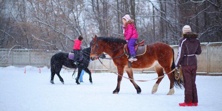 Aktivně strávené vánoční prázdniny: 4 dny mezi koňmi a dalšími zvířátky