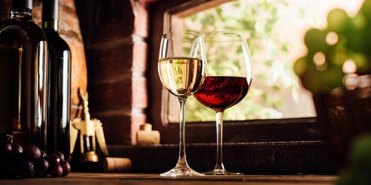 Vinařský pobyt v Bořeticích: degustace, hostina a neomezená konzumace vín