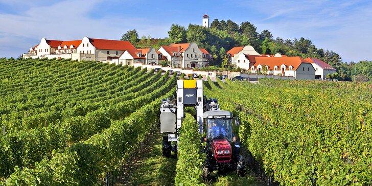 Během 3 víkendů vinařem: práce na vinici i relax ve wellness a jídlo pro dva