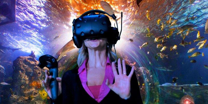 Hodinové hraní her ve virtuální realitě pro dvojice i partu přátel nebo kolegů