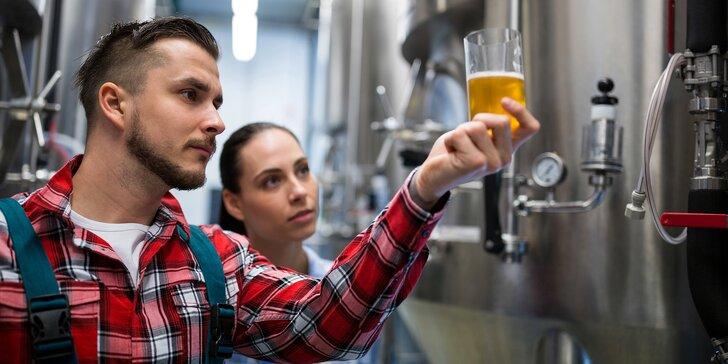 8hodinový kurz vaření piva a degustace: Uvařte si vlastní várku