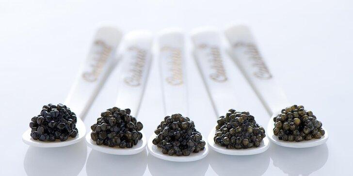 Pochoutka labužníků: kaviár Calvisius špičkové kvality i v luxusním balíčku