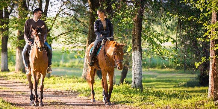 Dovolená s vůní koňské hřívy: Pobyt pro 2 na statku s projížďkou i polopenzí