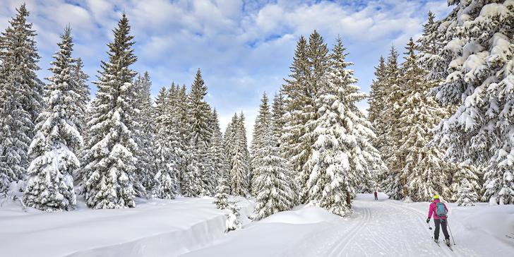 Zimní či jarní dovolená v krkonošské horské chatě s polopenzí a saunou