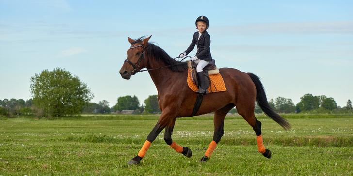 Individuální vyjížďka na koni v délce 30 nebo 60 minut pro dospělé i děti