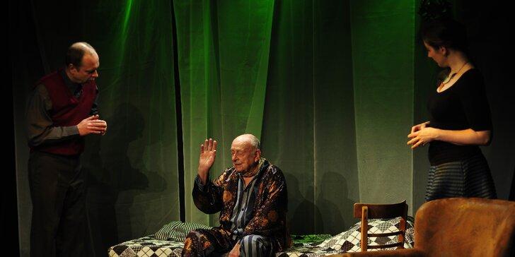 Vstupenka na divadelní představení Iluzionisté
