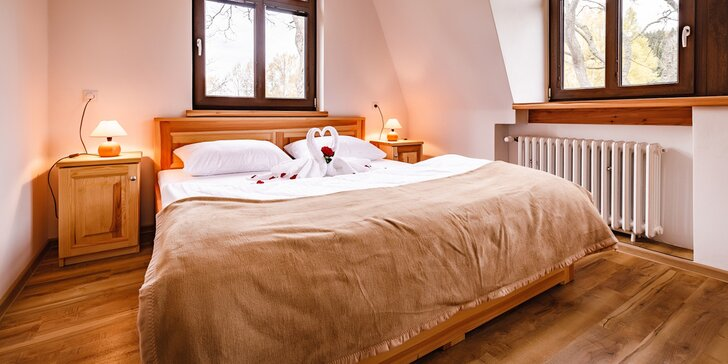 V páru i s rodinou do Krušných hor: polopenze, sauna, blízko skiareály a Vary