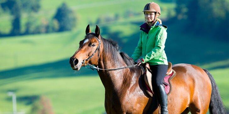 Radost na koňském hřbetu: Až 45 min. jízdy v přírodě nebo hiporehabilitace