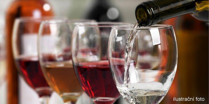 Vinná degustace vinařství Nešpor & Rajský v Klášterní Vinárně
