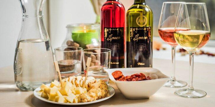 Chvilka pohody u skleničky: Degustace kvalitních vín dle výběru a občerstvení