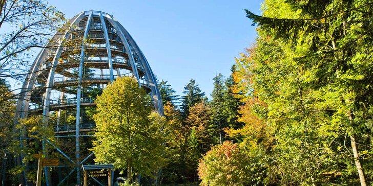 1denní výlet: Bavorský les, Stezka v korunách stromů a historický Pasov
