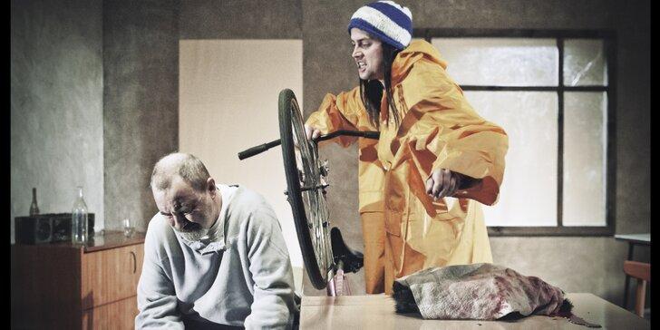 Vstupenka na divadelní představení Poručík z Inishmoru