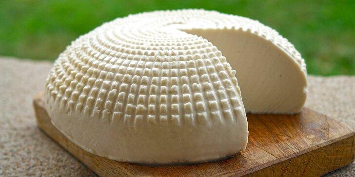 Zdravé a domácí: kurz výroby sýrů, jogurtů a mléčných výrobků