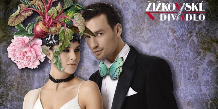 Vstupenka pro 1 osobu na ples Žižkovského divadla Járy Cimrmana