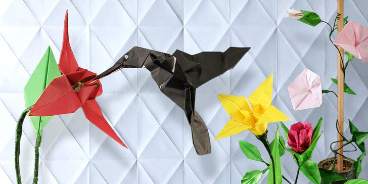 Kurz origami pro začátečníky i pokročilé: Naučte se skládat zvířátka a květiny