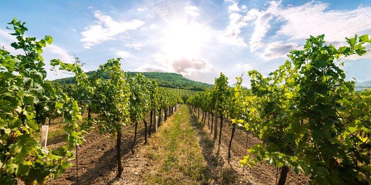 Za klenoty jižní Moravy: pobyt se snídaní pro 2 s neomezenou konzumací vína