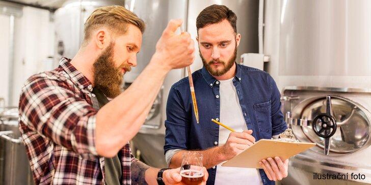 8hodinový kurz vaření piva a degustace: vlastní várka chutná nejlépe