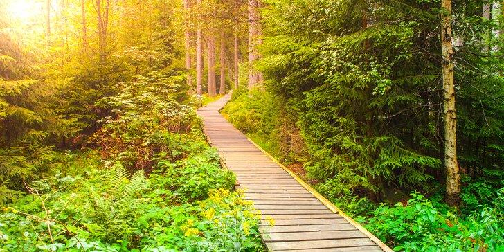 3 či 6denní kouzelná dovolená v Jeseníkách: polopenze nebo i hodina vířivky