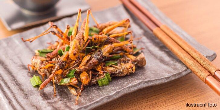Show šéfkuchaře Petra Ocknechta: Ochutnejte exotické hmyzí speciality