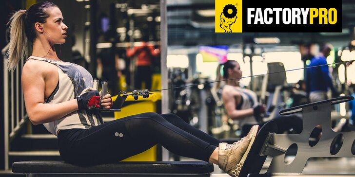 2x celodenní vstup do Factory Pro: wellness, posilovna i skupinové lekce