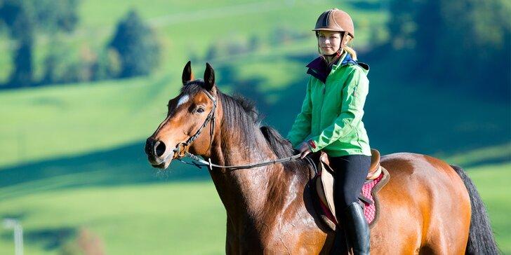 60 minut v sedle: projeďte se na koni v jízdárně JK Caballero
