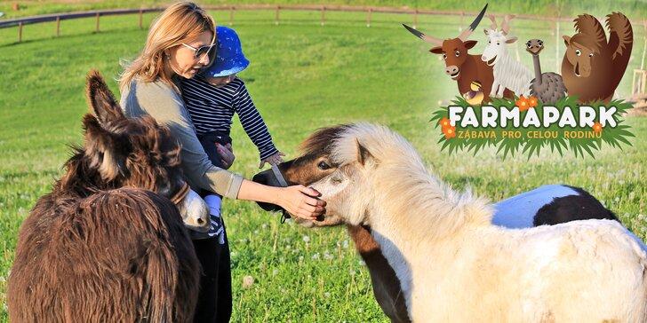 Rodinná vstupenka do Farmaparku: krmení zvířátek a spousta atrakcí