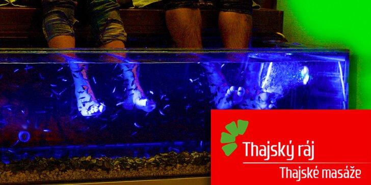 Příjemný relax s rybičkami Garra Rufa v Thajském ráji