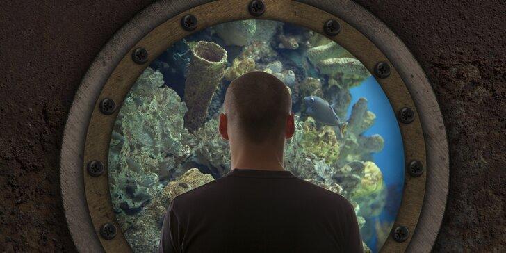 Zachraňte se z havarující ponorky: 60min. úniková hra pro 2–5 hráčů