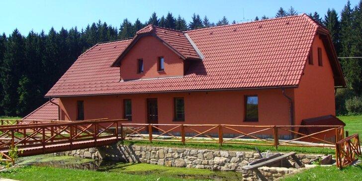 Dovča v penzionu na Vysočině: kouzlo nádherné přírody s koňmi i ovcemi