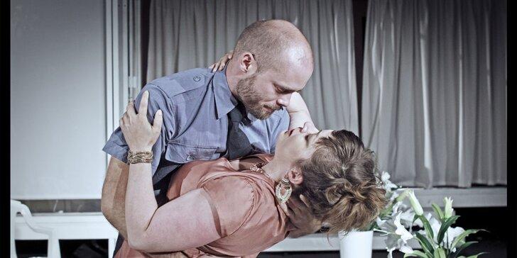 Divadelní představení: Mnoho povyku pro nic
