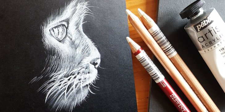 2denní víkendový výtvarný kurz: černobílá inverzní kresba, 18 hodin výuky