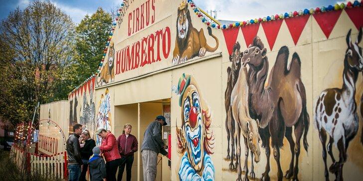 Vstupenky do Cirkusu Humberto: nadaní akrobati, klauni i exotická zvířata