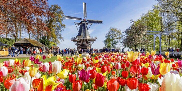 Výlet na květinového korzo do Keukenhofu i do večerního Amsterdamu