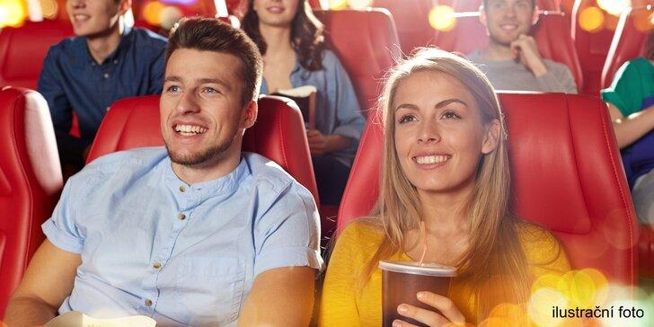 Vstupenka na rodinný film v Husí kůži v kině Lucerna