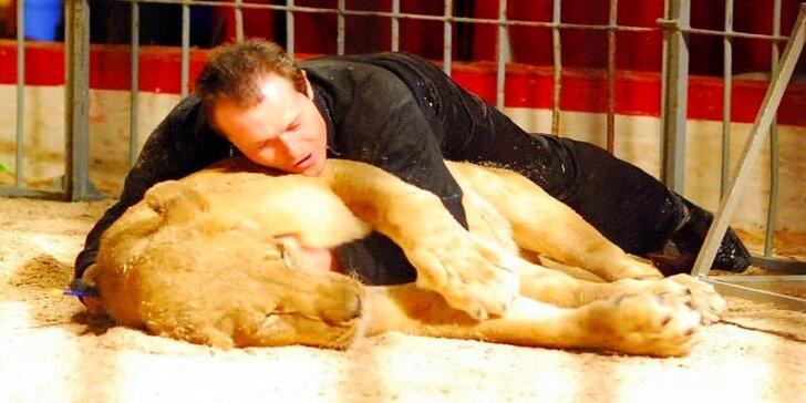 Cirkus Andres: show s akrobaty, klauny i drezurou lvů a dikobrazů