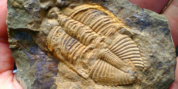 Památník Joachima Barranda: odhalte tajemství zkamenělin ve Skryjích