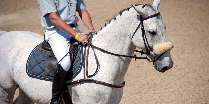 Víkendová hodina jízdy na koni pod dohledem instruktora