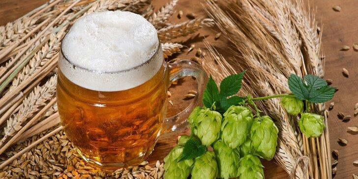 Pivní doktorát v Rožnovském pivovaru vč. oběda a neomezené degustace