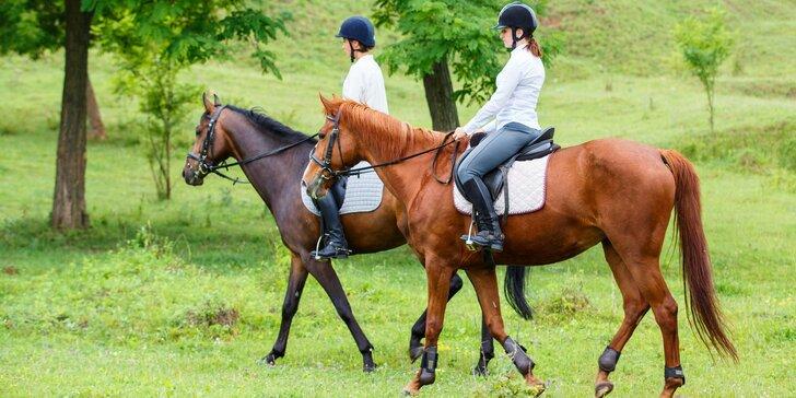 Hurá do sedla: 60minutová vyjížďka na koni malebnou přírodou
