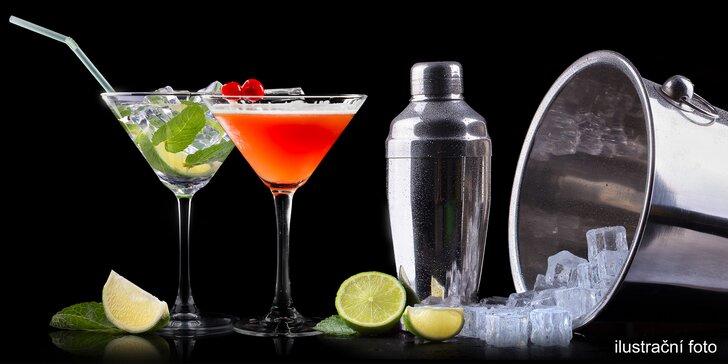 Letní osvěžení v centru Prahy: Martini a Tonic pro 1–4 osoby na Malé Straně