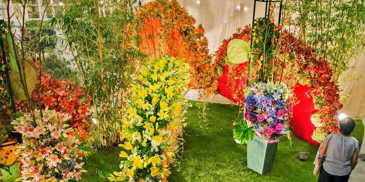 Mezinárodní květinová výstava a zahradnický veletrh v Tullnu s ohňostrojem