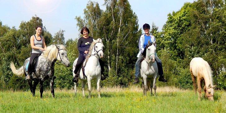 3 hodiny na ranči: Péče o koně a poníky a vyjížďka na poníkovi do přírody