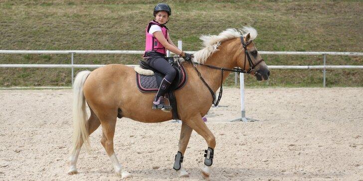 Jezdecký tábor pro děti od 7 let: teoretické i praktické lekce a zábava