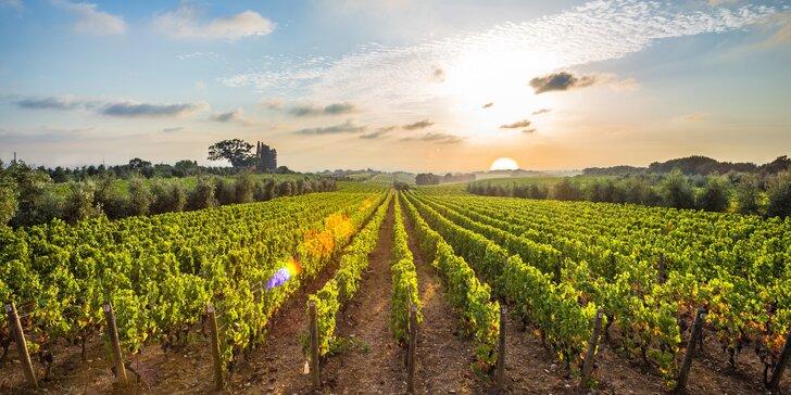 Léto mezi vinicemi: relax na Slovácku s polopenzí, wellness a místním vínem