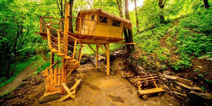 Romantika i dobrodružství: domek v korunách stromů a farmářská snídaně